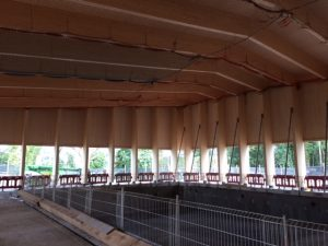 Construction Progressing Well at Freemen's School Swimming Pool, London